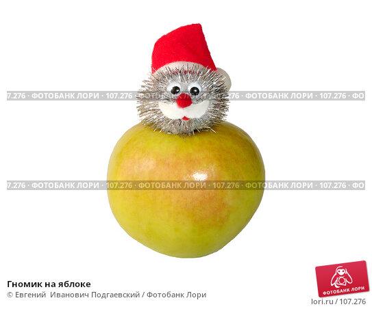 Гномик на яблоке, фото № 107276, снято 31 марта 2017 г. (c) Евгений  Иванович Подгаевский / Фотобанк Лори