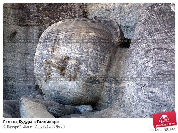 Купить «Голова Будды в Галвихаре», фото № 103660, снято 22 марта 2018 г. (c) Валерий Шанин / Фотобанк Лори