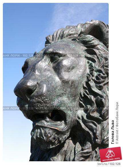 Голова Льва, фото № 102128, снято 27 октября 2016 г. (c) Astroid / Фотобанк Лори