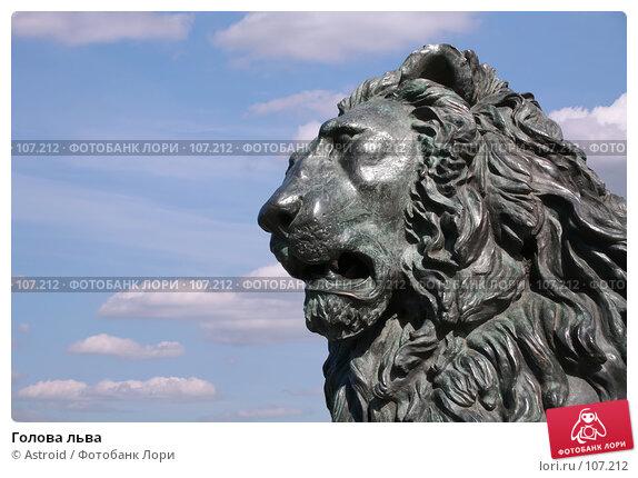 Голова льва, фото № 107212, снято 11 июня 2007 г. (c) Astroid / Фотобанк Лори