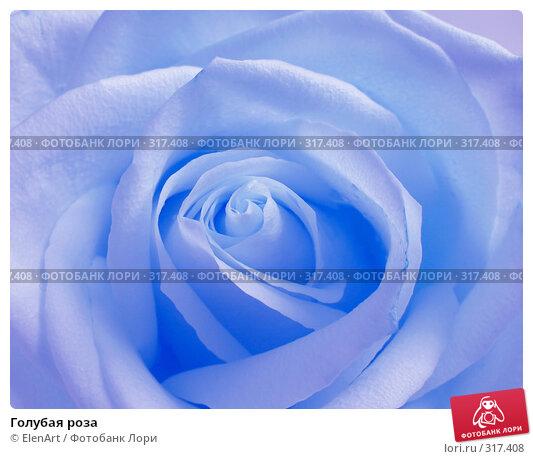 Голубая роза, фото № 317408, снято 26 июня 2017 г. (c) ElenArt / Фотобанк Лори