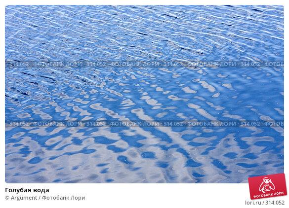 Голубая вода, фото № 314052, снято 5 июня 2008 г. (c) Argument / Фотобанк Лори