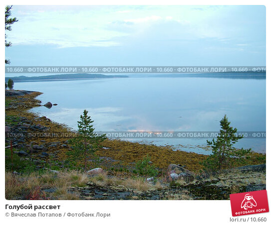 Голубой рассвет, фото № 10660, снято 5 августа 2004 г. (c) Вячеслав Потапов / Фотобанк Лори