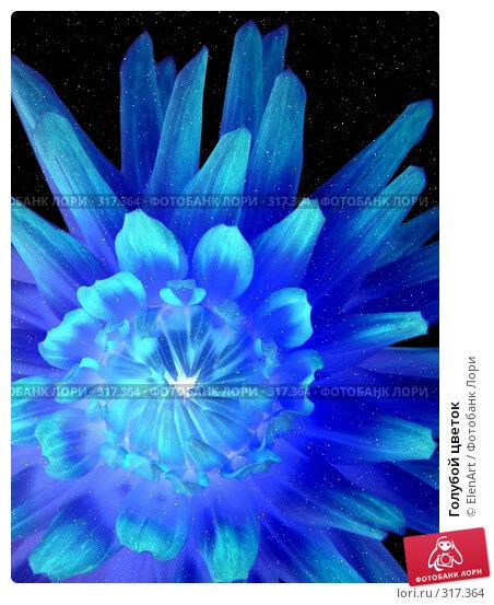 Голубой цветок, фото № 317364, снято 24 октября 2016 г. (c) ElenArt / Фотобанк Лори