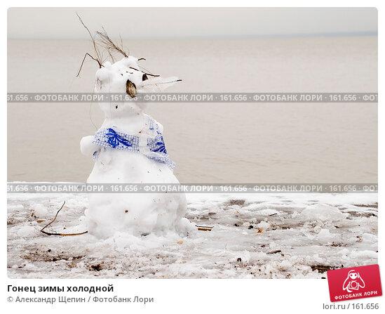 Гонец зимы холодной, эксклюзивное фото № 161656, снято 11 ноября 2007 г. (c) Александр Щепин / Фотобанк Лори