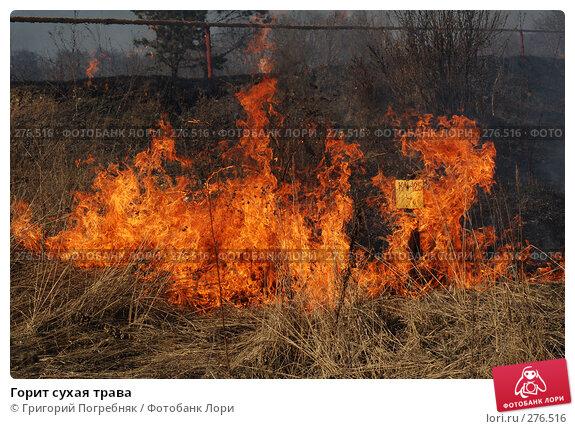 Горит сухая трава, фото № 276516, снято 7 мая 2008 г. (c) Григорий Погребняк / Фотобанк Лори