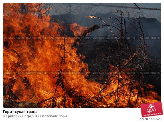 Горит сухая трава, фото № 276520, снято 7 мая 2008 г. (c) Григорий Погребняк / Фотобанк Лори