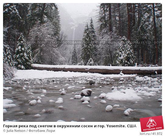 Горная река под снегом в окружении сосен и гор. Yosemite. США, фото № 41972, снято 26 февраля 2007 г. (c) Julia Nelson / Фотобанк Лори