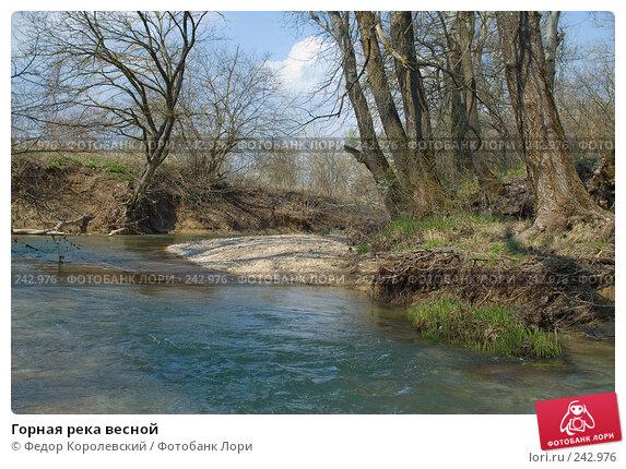 Горная река весной, фото № 242976, снято 4 апреля 2008 г. (c) Федор Королевский / Фотобанк Лори
