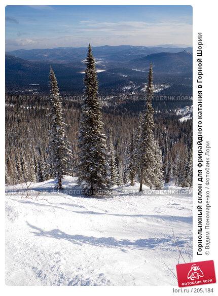 Горнолыжный склон для фрирайдного катания в Горной Шории, фото № 205184, снято 17 февраля 2008 г. (c) Вадим Пономаренко / Фотобанк Лори