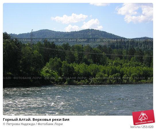 Горный Алтай. Верховья реки Бия, фото № 253020, снято 22 июня 2006 г. (c) Петрова Надежда / Фотобанк Лори
