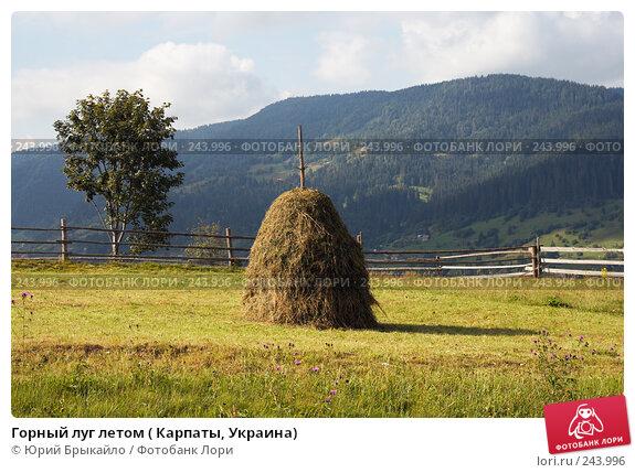 Горный луг летом ( Карпаты, Украина), фото № 243996, снято 2 сентября 2007 г. (c) Юрий Брыкайло / Фотобанк Лори