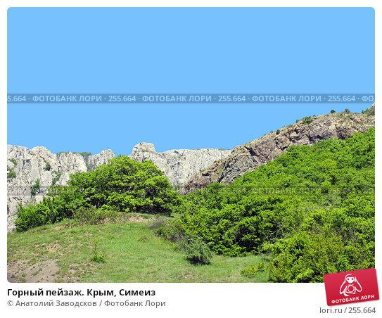 Горный пейзаж. Крым, Симеиз, фото № 255664, снято 8 мая 2004 г. (c) Анатолий Заводсков / Фотобанк Лори
