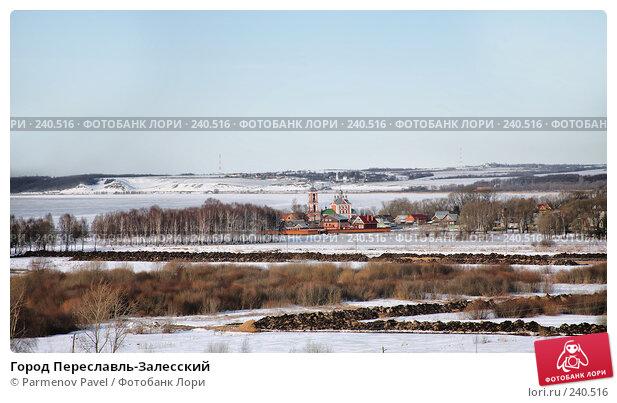 Город Переславль-Залесский, фото № 240516, снято 24 февраля 2008 г. (c) Parmenov Pavel / Фотобанк Лори