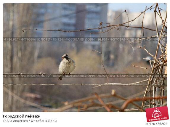Купить «Городской пейзаж», фото № 86924, снято 19 марта 2007 г. (c) Alla Andersen / Фотобанк Лори
