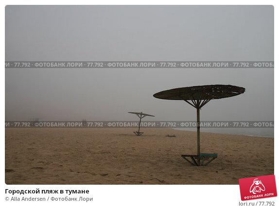 Городской пляж в тумане, фото № 77792, снято 13 февраля 2007 г. (c) Alla Andersen / Фотобанк Лори