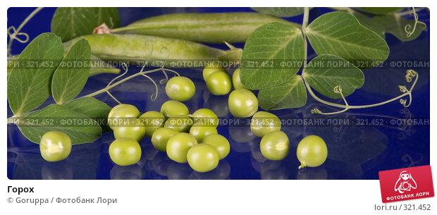 Купить «Горох», фото № 321452, снято 12 июня 2008 г. (c) Goruppa / Фотобанк Лори