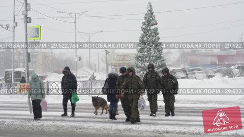 Купить «Горожане переходят дорогу по пешеходному переходу во время снегопада», видеоролик № 29622784, снято 28 декабря 2018 г. (c) А. А. Пирагис / Фотобанк Лори