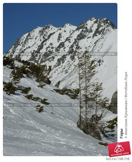 Горы, фото № 126116, снято 3 февраля 2006 г. (c) Анастасия Лукьянова / Фотобанк Лори