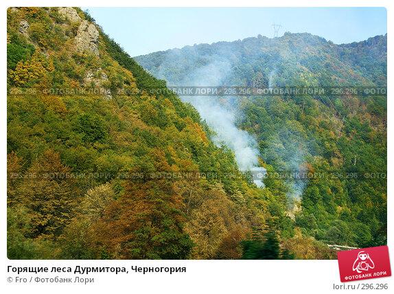 Горящие леса Дурмитора, Черногория, фото № 296296, снято 28 августа 2007 г. (c) Fro / Фотобанк Лори