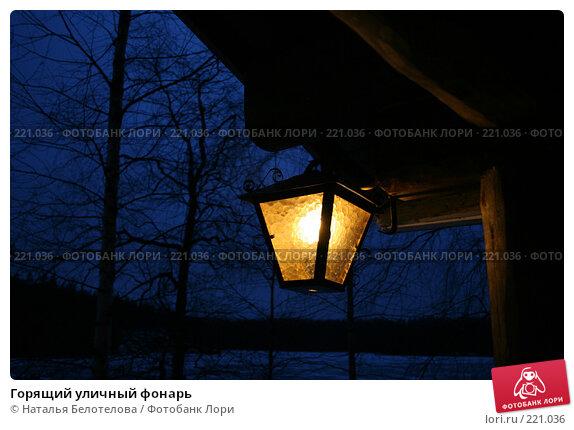 Купить «Горящий уличный фонарь», фото № 221036, снято 15 декабря 2007 г. (c) Наталья Белотелова / Фотобанк Лори
