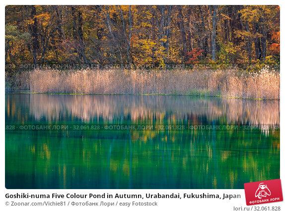 Goshiki-numa Five Colour Pond in Autumn, Urabandai, Fukushima, Japan. Стоковое фото, фотограф Zoonar.com/Vichie81 / easy Fotostock / Фотобанк Лори