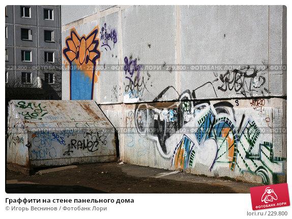 Купить «Граффити на стене панельного дома», фото № 229800, снято 22 марта 2008 г. (c) Игорь Веснинов / Фотобанк Лори