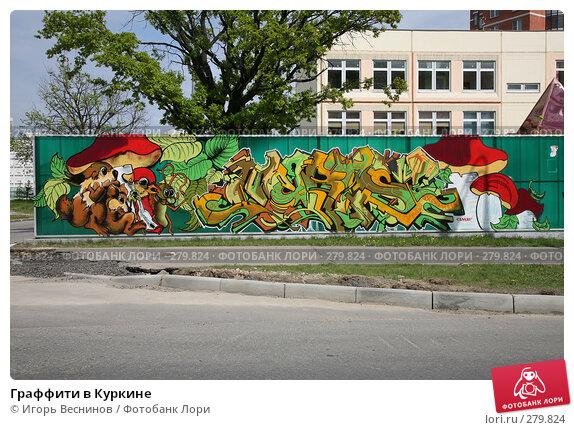 Граффити в Куркине, фото № 279824, снято 10 мая 2008 г. (c) Игорь Веснинов / Фотобанк Лори