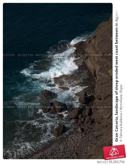 Gran Canaria, landscape of steep eroded west coast between in Agaete municipality, hike between Puerto de las Nieves and dark sand Guayedra beach. Стоковое фото, фотограф Tamara Kulikova / Фотобанк Лори