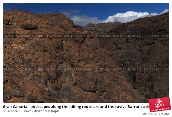 Gran Canaria, landscapes along the hiking route around the ravive Barranco del Toro at the southern part of the island. Стоковое фото, фотограф Tamara Kulikova / Фотобанк Лори