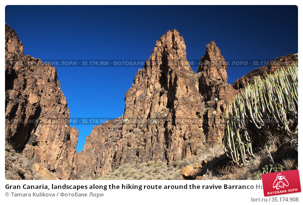 Gran Canaria, landscapes along the hiking route around the ravive Barranco Hondo, The Deep Ravine at the southern part of the island. Стоковое фото, фотограф Tamara Kulikova / Фотобанк Лори
