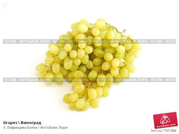 Grapes \ Виноград, фото № 157896, снято 20 декабря 2007 г. (c) Лифанцева Елена / Фотобанк Лори