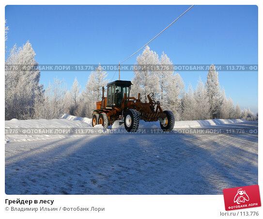 Купить «Грейдер в лесу», фото № 113776, снято 9 ноября 2007 г. (c) Владимир Ильин / Фотобанк Лори