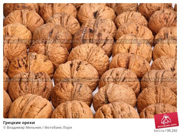 Грецкие орехи, фото № 98292, снято 11 октября 2007 г. (c) Владимир Мельник / Фотобанк Лори