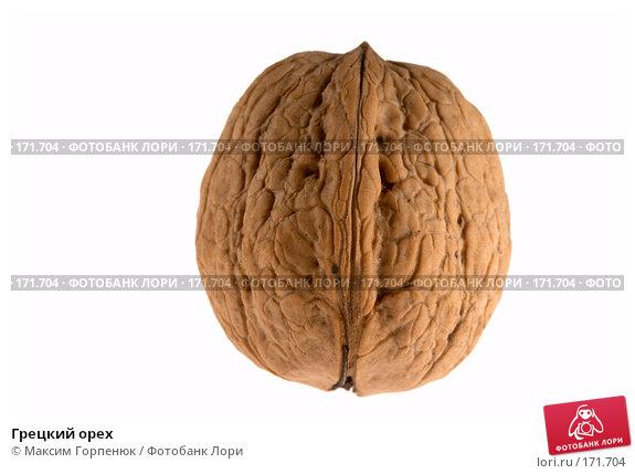 Грецкий орех, фото № 171704, снято 24 июля 2017 г. (c) Максим Горпенюк / Фотобанк Лори