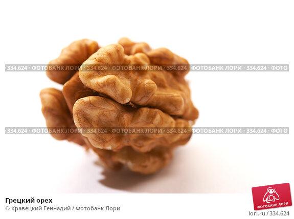 Купить «Грецкий орех», фото № 334624, снято 24 сентября 2005 г. (c) Кравецкий Геннадий / Фотобанк Лори