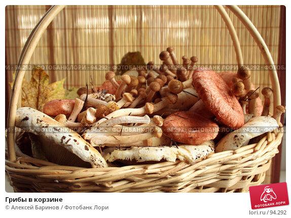 Грибы в корзине, фото № 94292, снято 20 сентября 2007 г. (c) Алексей Баринов / Фотобанк Лори