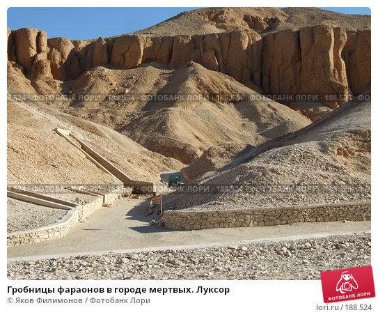 Гробницы фараонов в городе мертвых. Луксор, фото № 188524, снято 15 января 2008 г. (c) Яков Филимонов / Фотобанк Лори