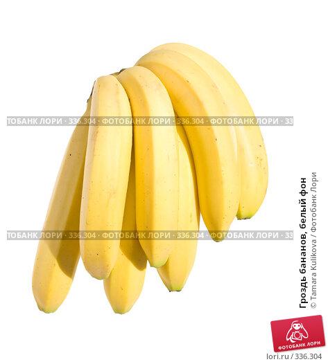 Гроздь бананов, белый фон, фото № 336304, снято 27 июня 2008 г. (c) Tamara Kulikova / Фотобанк Лори