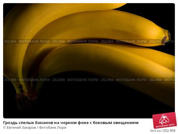 Гроздь спелых бананов на черном фоне с боковым овещением, фото № 252904, снято 13 апреля 2008 г. (c) Евгений Захаров / Фотобанк Лори