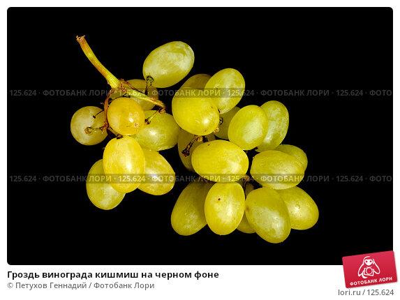 Купить «Гроздь винограда кишмиш на черном фоне», фото № 125624, снято 5 ноября 2007 г. (c) Петухов Геннадий / Фотобанк Лори