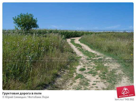 Грунтовая дорога в поле, фото № 143592, снято 12 августа 2007 г. (c) Юрий Синицын / Фотобанк Лори