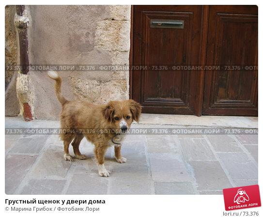 Грустный щенок у двери дома, фото № 73376, снято 15 июня 2007 г. (c) Марина Грибок / Фотобанк Лори