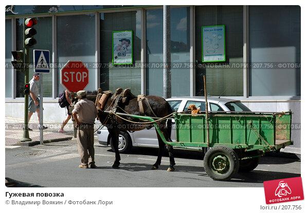 Гужевая повозка, фото № 207756, снято 10 сентября 2004 г. (c) Владимир Воякин / Фотобанк Лори