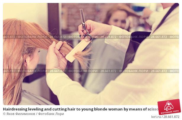 Купить «Hairdressing leveling and cutting hair to young blonde woman by means of scissors and hairbrush», фото № 28661872, снято 7 марта 2017 г. (c) Яков Филимонов / Фотобанк Лори