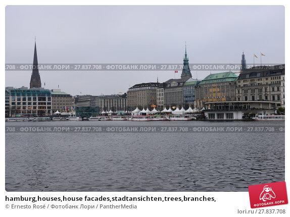 Купить «hamburg,houses,house facades,stadtansichten,trees,branches,», фото № 27837708, снято 20 февраля 2018 г. (c) PantherMedia / Фотобанк Лори