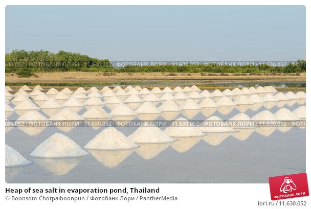 Купить «Heap of sea salt in evaporation pond, Thailand», фото № 11630052, снято 25 мая 2019 г. (c) PantherMedia / Фотобанк Лори
