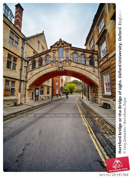 Купить «Hertford bridge or the Bridge of sighs. Oxford University. Oxford. England», фото № 29141564, снято 15 мая 2009 г. (c) Serg Zastavkin / Фотобанк Лори