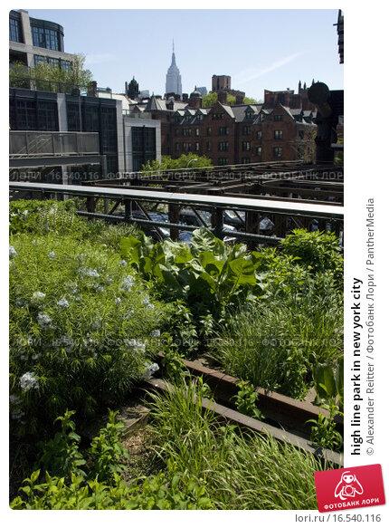 Купить «high line park in new york city», фото № 16540116, снято 25 мая 2019 г. (c) PantherMedia / Фотобанк Лори
