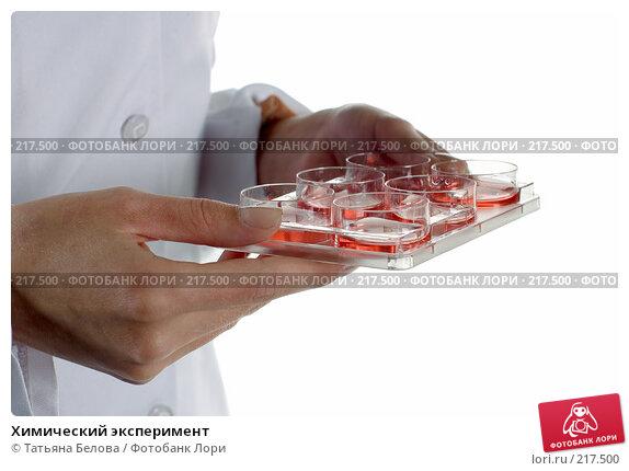 Купить «Химический эксперимент», фото № 217500, снято 1 марта 2008 г. (c) Татьяна Белова / Фотобанк Лори